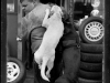 Robert and his Watchdogs, Bedford Avenue Tire Shop, Williamsburg, Brooklyn, 1996
